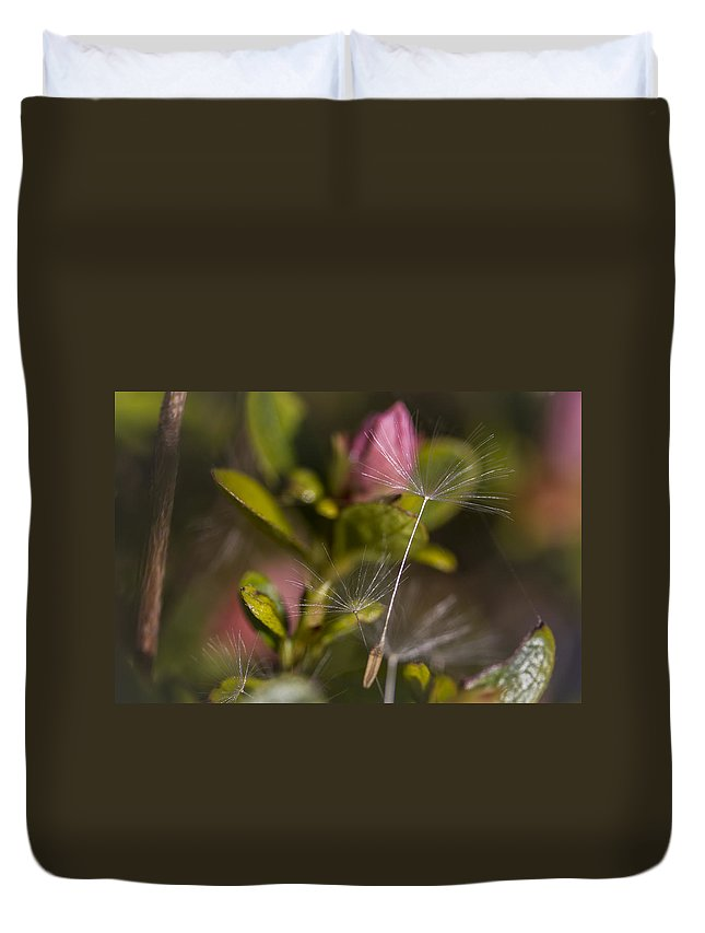 Canada Duvet Cover featuring the photograph Soft And Delicate by Windy Corduroy