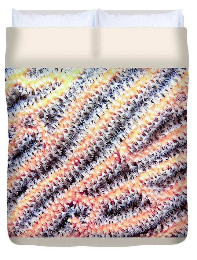 Micronesia Duvet Cover featuring the photograph Soft Corals 10 by Dawn Eshelman