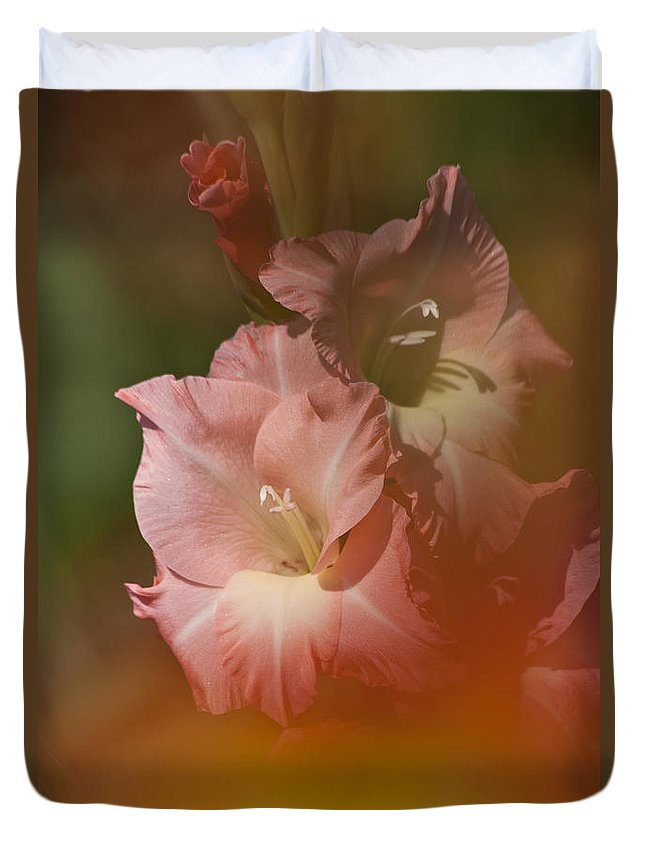 Gladiolus Duvet Cover featuring the photograph Soft Gladiolus by Heiko Koehrer-Wagner
