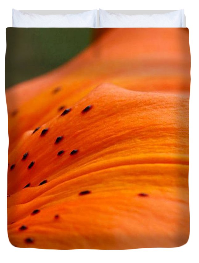 Flower Duvet Cover featuring the photograph Soft Lily by Carol Lynch