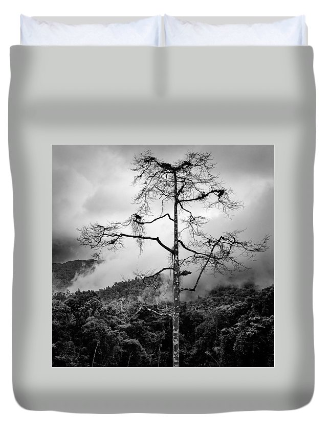Cameron Highlands Duvet Cover featuring the photograph Solitary Tree by Dave Bowman