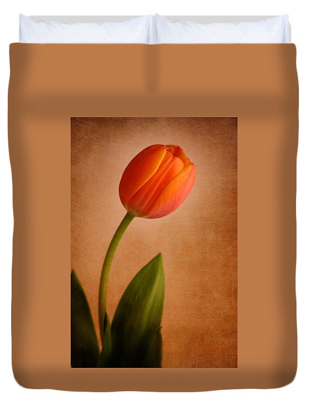 Tulip Duvet Cover featuring the photograph Solitary Tulip by David and Carol Kelly