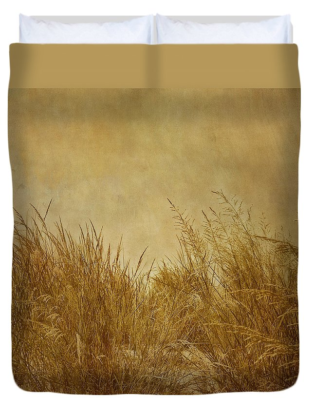 Beach Duvet Cover featuring the photograph Solitude by Kim Hojnacki