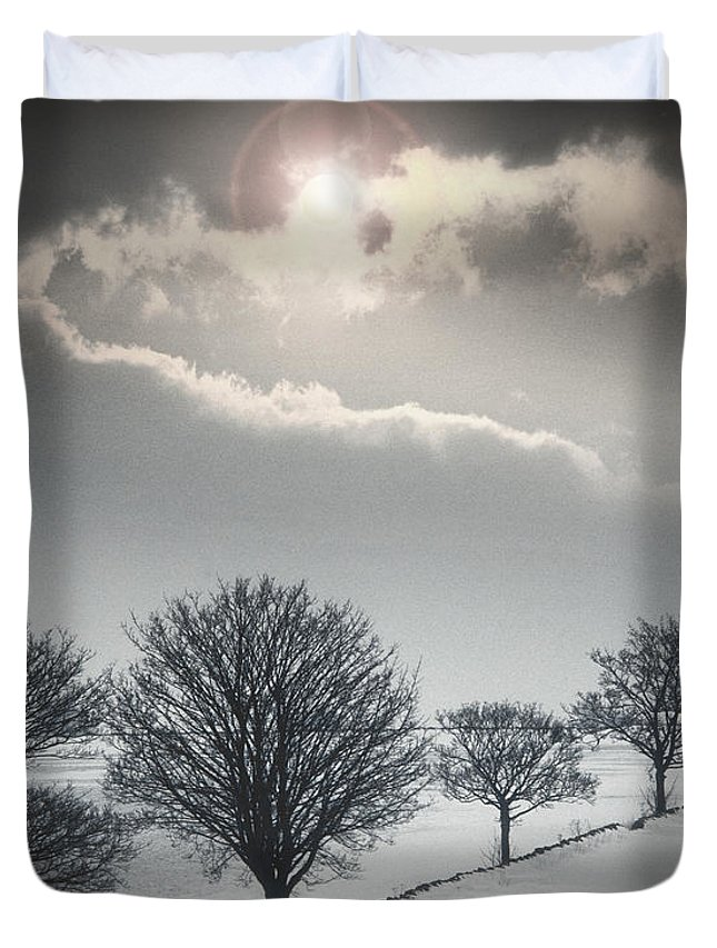 Europe Duvet Cover featuring the photograph Solitude Of Coldness by Edmund Nagele