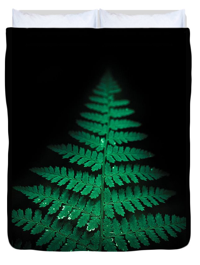 Fern Duvet Cover featuring the photograph Soothing Fern by Shane Holsclaw