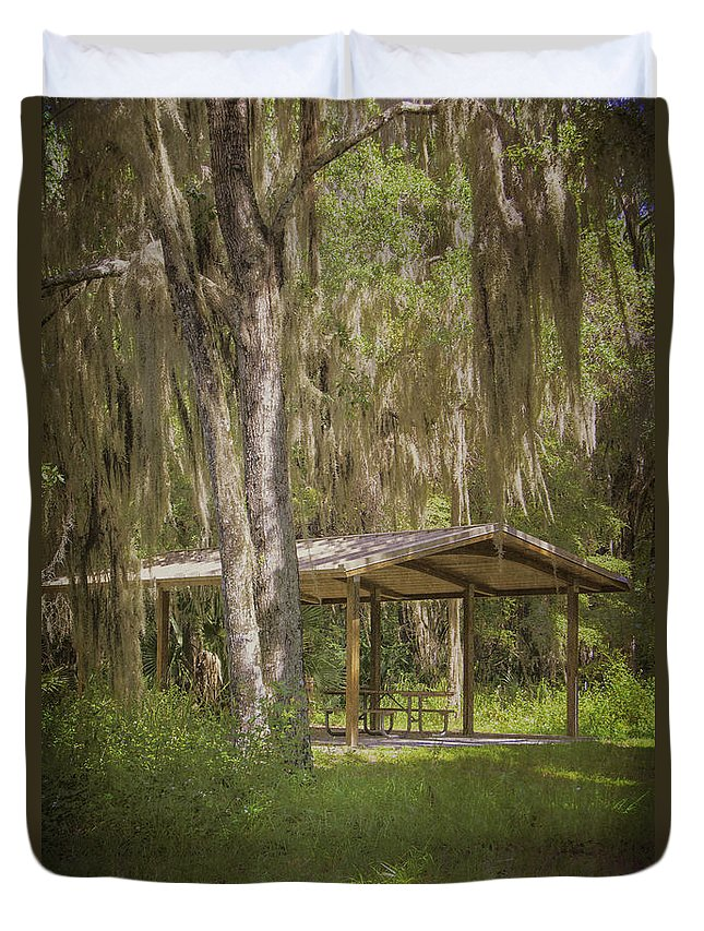 Trees Duvet Cover featuring the photograph Southern Shade by Judy Hall-Folde