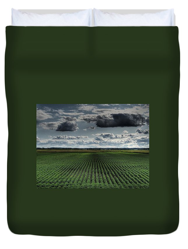 Soy Bean Duvet Cover featuring the photograph Soy Beans by Jane Linders