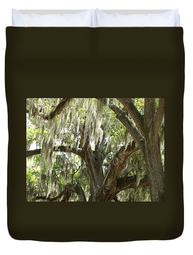 Trees Duvet Cover featuring the photograph Spanish Moss by Beth Vincent