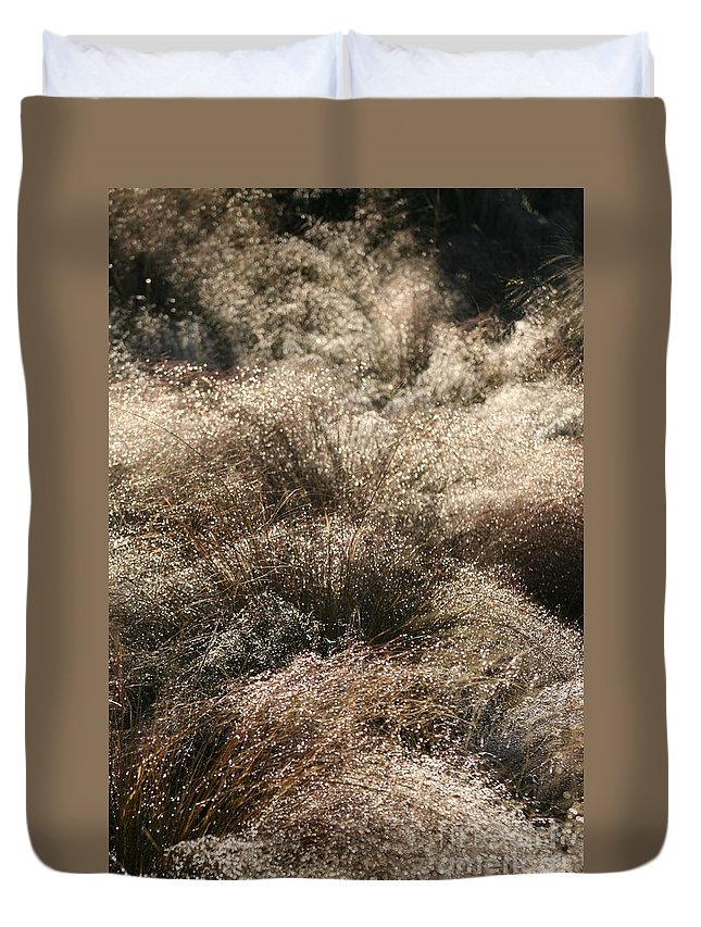Grasses Duvet Cover featuring the photograph Sparkling Grasses by Nadine Rippelmeyer
