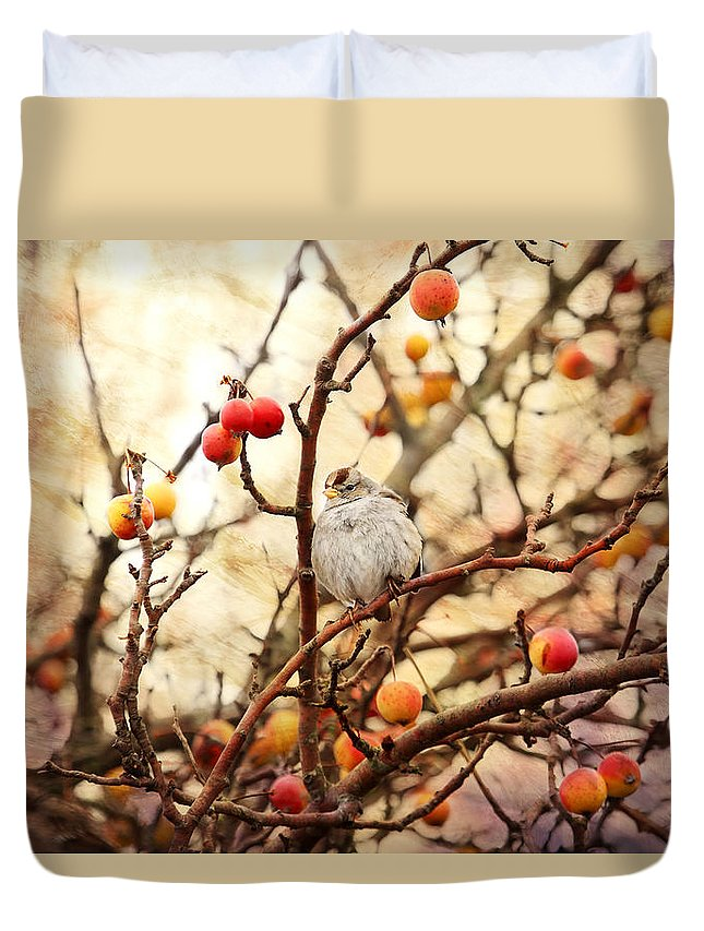 Sparrows Duvet Cover featuring the photograph Sparrow In A Crab Apple Tree by Peggy Collins