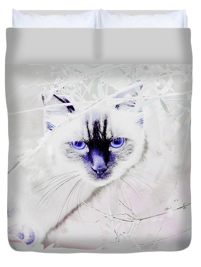 Animals Duvet Cover featuring the photograph Spellbound by Holly Kempe