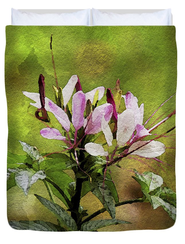 Plant Duvet Cover featuring the photograph Spider Plant by Sharon M Connolly