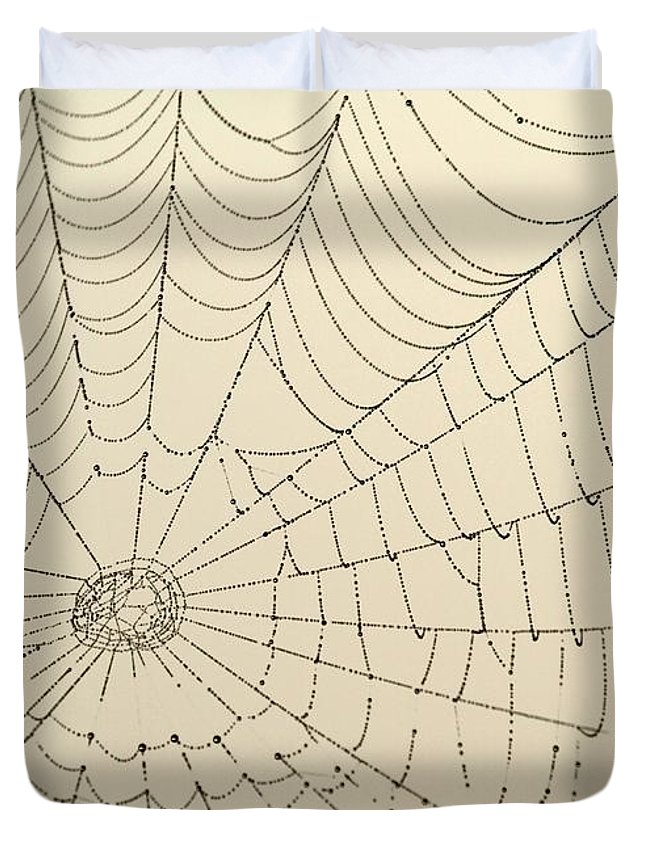 Spider Web Duvet Cover featuring the photograph Spiderweb At Dawn by Sabrina L Ryan