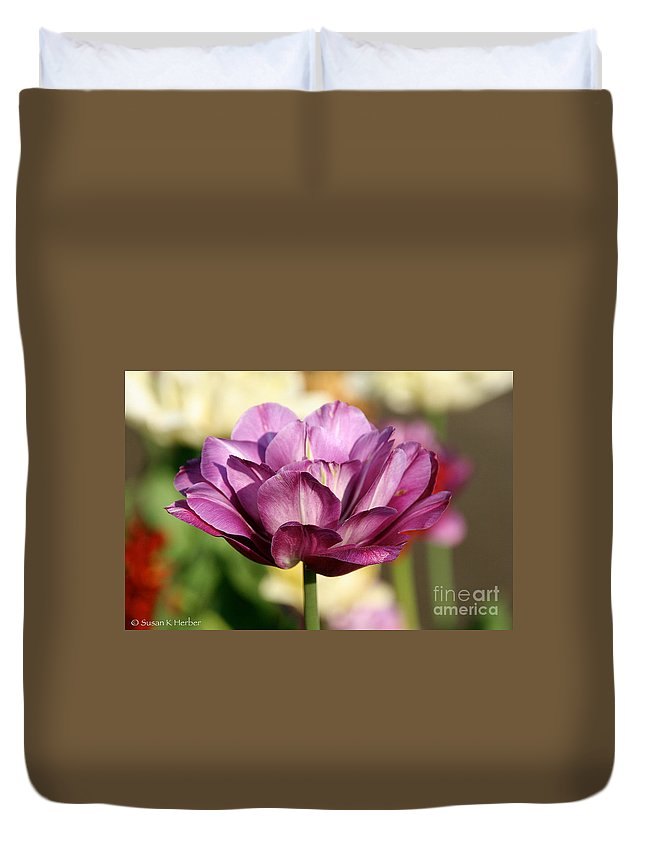 Flower Duvet Cover featuring the photograph Splendid Tulip by Susan Herber
