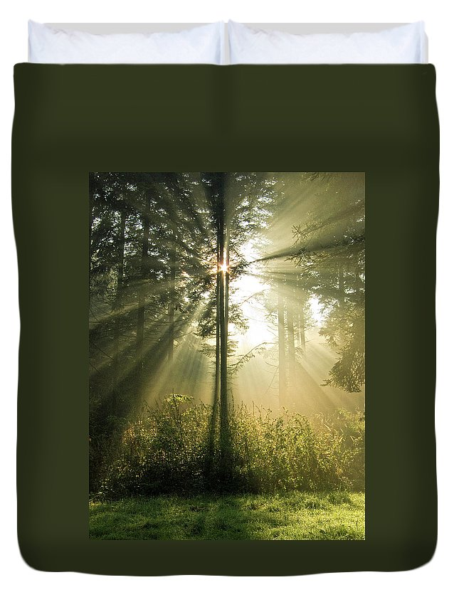 Nature Duvet Cover featuring the photograph Splendour by Daniel Csoka