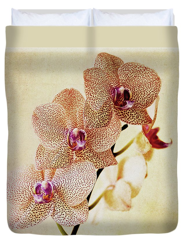 Petal Duvet Cover featuring the photograph Spotted Orchid by Image By Sherry Galey