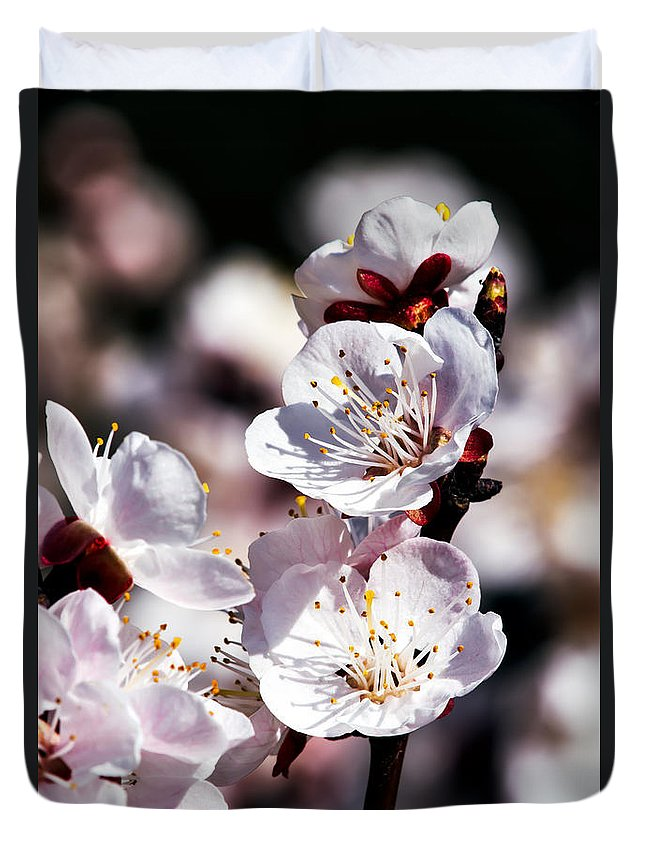 Spring Duvet Cover featuring the photograph Spring Bloom 3 by Tomasz Dziubinski
