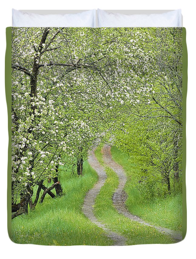 Spring Duvet Cover featuring the photograph Spring Blossom Road by Alan L Graham