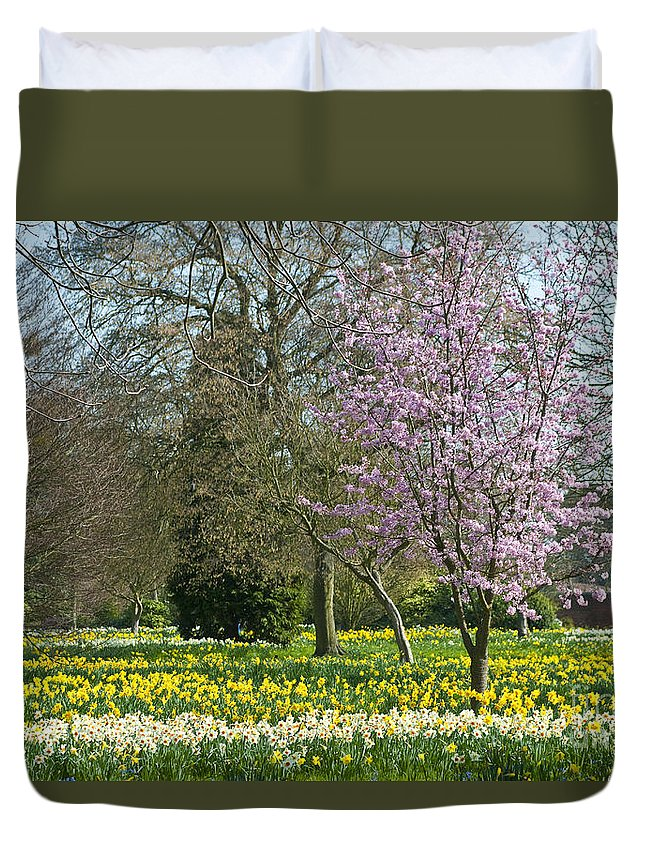 England Duvet Cover featuring the photograph Spring Blossoms by Lana Enderle