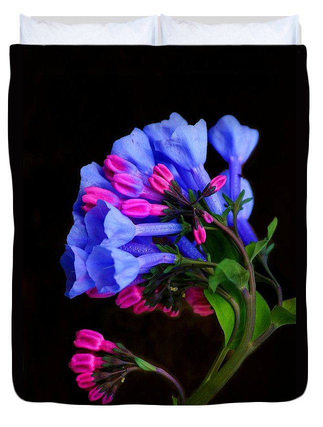 Flower Duvet Cover featuring the photograph Spring Bluebells by John Absher