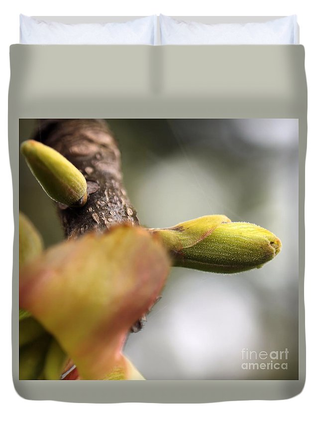 Leaf Duvet Cover featuring the photograph Spring Buds by Kenny Glotfelty