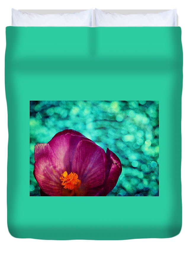 Crocus Duvet Cover featuring the photograph Spring Crocus by Peggy Collins