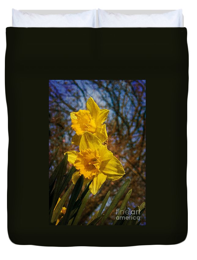 Daffodil Odorus Duvet Cover featuring the photograph Spring Daffodils by Brian Roscorla