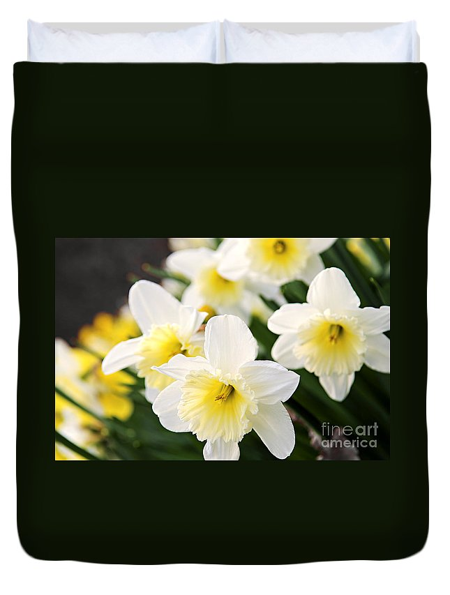 Daffodil Duvet Cover featuring the photograph Spring Daffodils by Elena Elisseeva