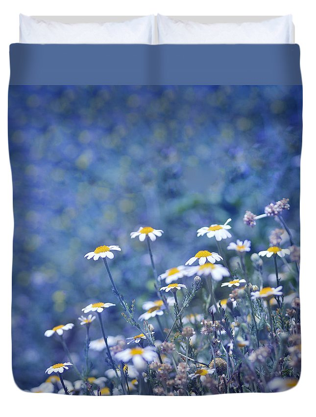 Landscape Duvet Cover featuring the photograph Spring Daisies by Guido Montanes Castillo