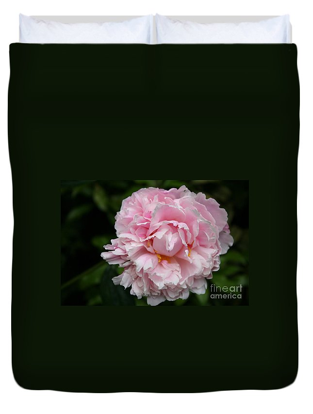 Peony Duvet Cover featuring the photograph Spring In Pink by Christiane Schulze Art And Photography