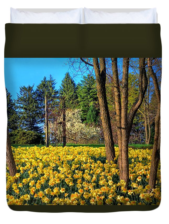 Yellow Duvet Cover featuring the photograph Spring Is In The Air by John Absher
