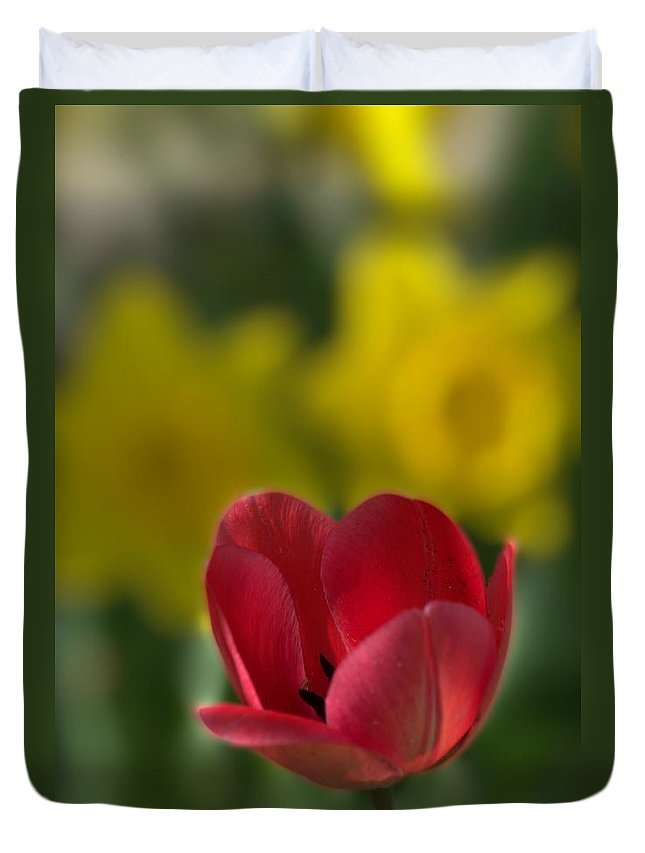Tulip Duvet Cover featuring the photograph Spring Photo Fun by John Greaves