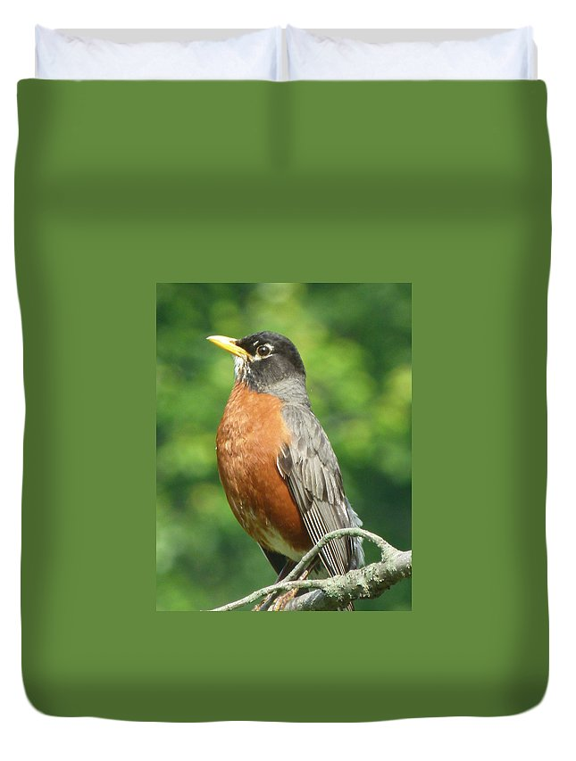 Bird Duvet Cover featuring the photograph Spring Robin by Richard Bryce and Family