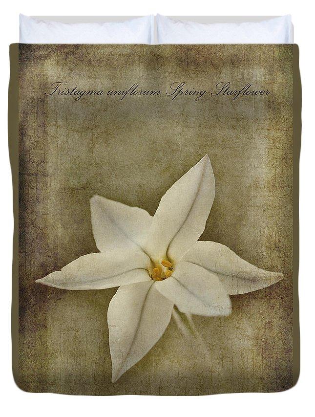 Starflower Duvet Covers