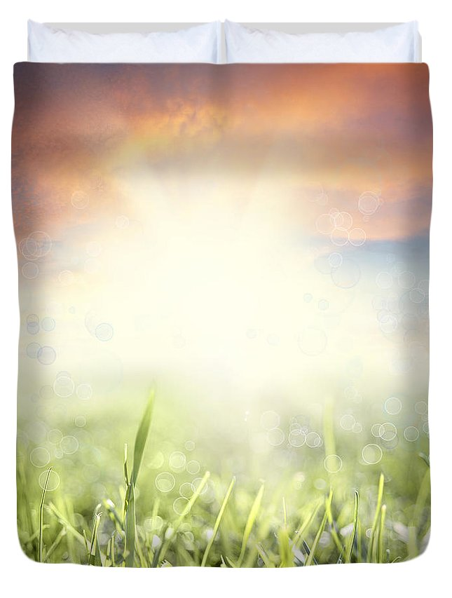 Beauty Duvet Cover featuring the photograph Spring Sun by Les Cunliffe