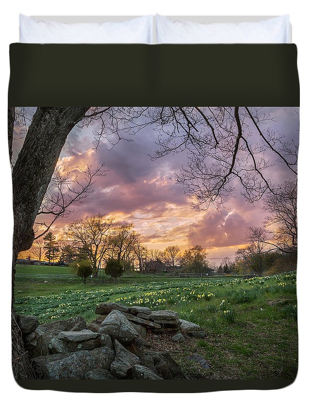 Daffodil Duvet Cover featuring the photograph Spring Sunset by Bill Wakeley