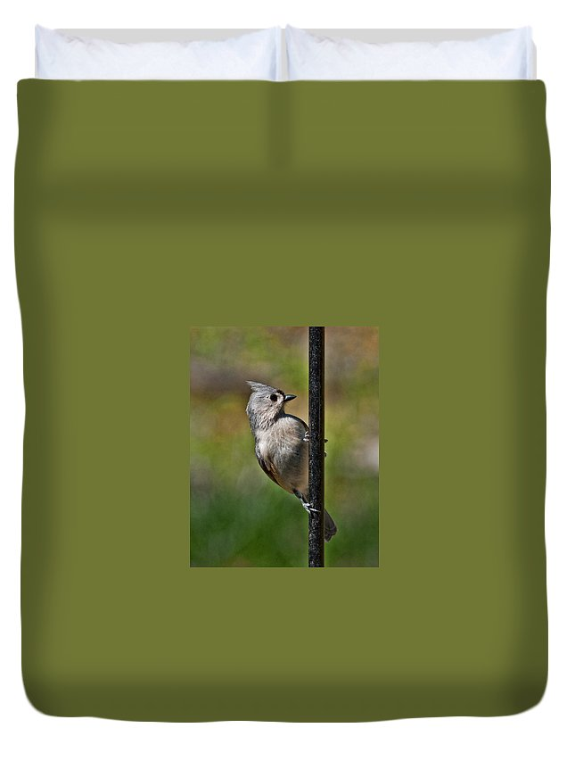 Tufted Duvet Cover featuring the photograph Spring Titmouse 1 by Photos By Cassandra