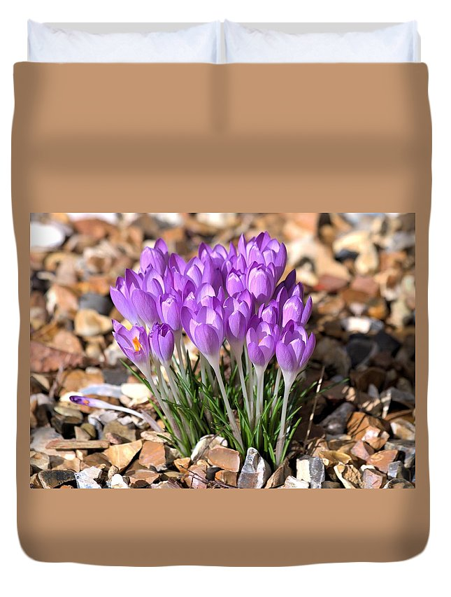 Spring Flowers Duvet Cover featuring the photograph Springflowers by Gordon Auld