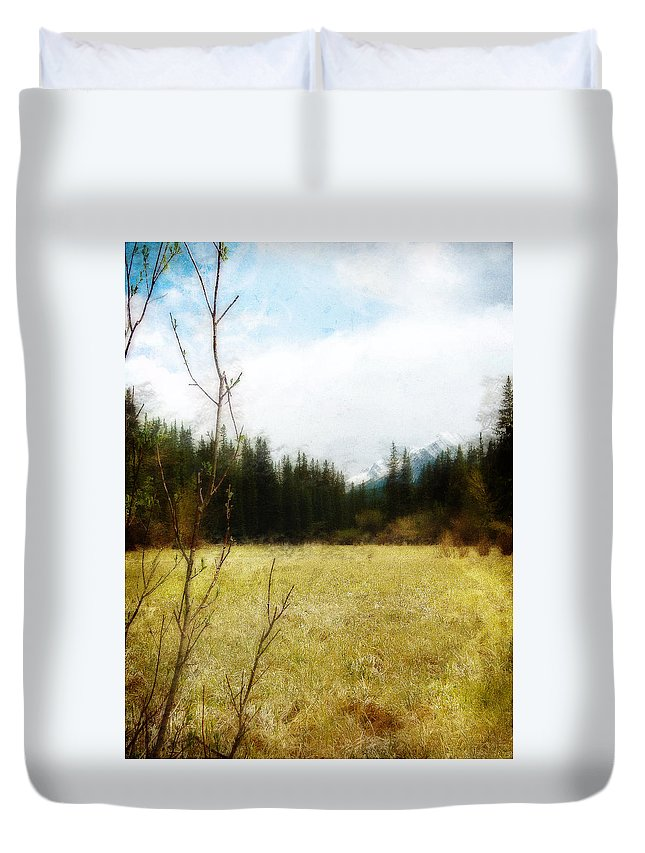 Field Duvet Cover featuring the photograph Springtime In The Mountains by Jo-Anne Gazo-McKim