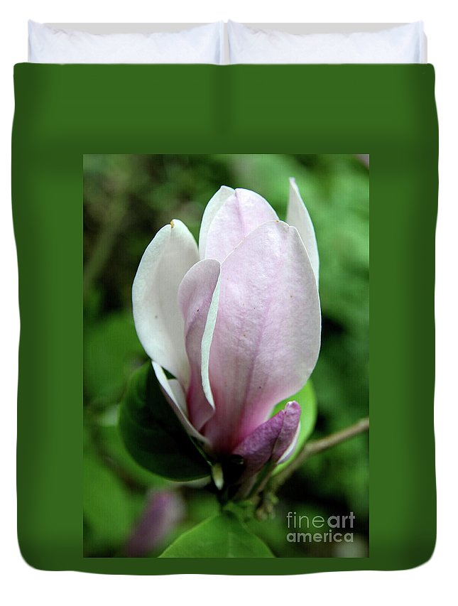 Magnolia Duvet Cover featuring the photograph Springtime Love by Christiane Schulze Art And Photography