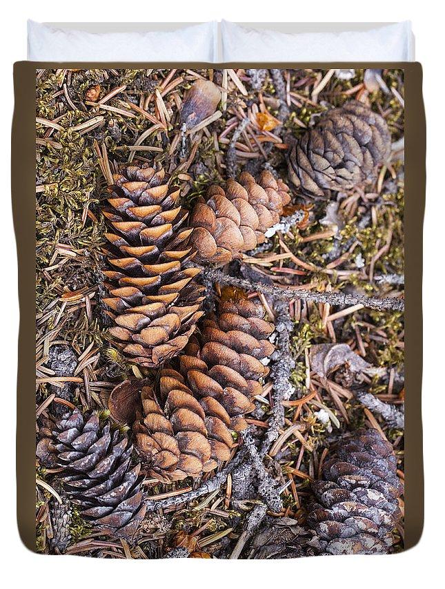 Doug Lloyd Duvet Cover featuring the photograph Spruce Cones by Doug Lloyd