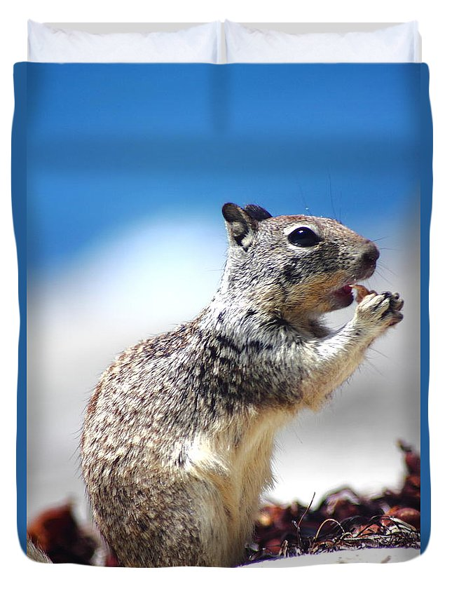 Hungry Ground Squirrel Duvet Cover featuring the photograph Squirrel Enjoying Lunch On The Beach by Richard Cheski
