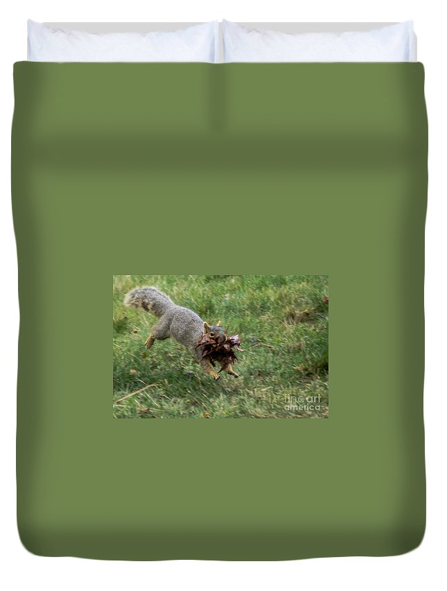 Squirrel Duvet Cover featuring the photograph Squirrel Nest Bulding by Robert Bales
