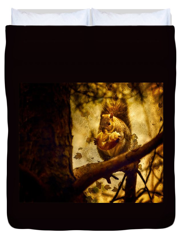 Autum Squirrel With Pear Duvet Cover featuring the photograph Squirrel With Pear by Peter v Quenter