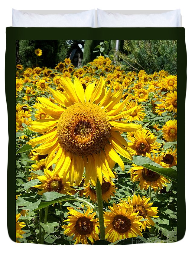 Sunflower Duvet Cover featuring the photograph Standing Out by Christiane Schulze Art And Photography