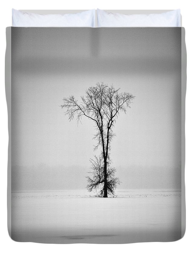 Elm Tree Duvet Cover featuring the photograph Standing Strong by Joshua McCullough