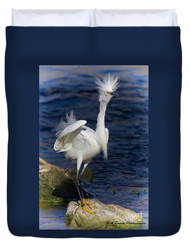 Snowy Egret Duvet Cover featuring the photograph Standing Tall by Barbara Bowen
