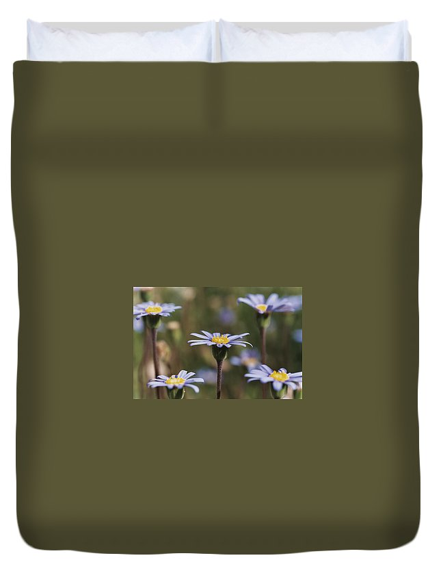 Felicia Duvet Cover featuring the photograph Standing Tall by Caitlyn Grasso
