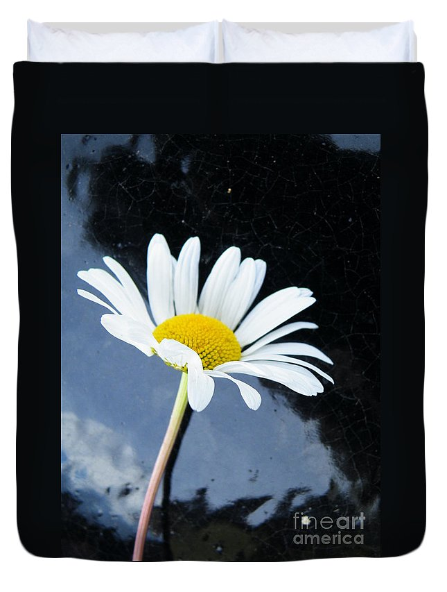 Daisy Duvet Cover featuring the photograph Standout by Brian Boyle