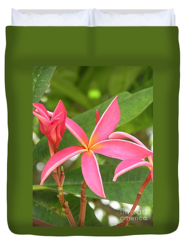 Plumeria Duvet Cover featuring the photograph Starburst Plumeria by Mary Deal